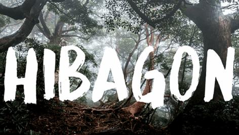 فونت انگلیسی Hibagon